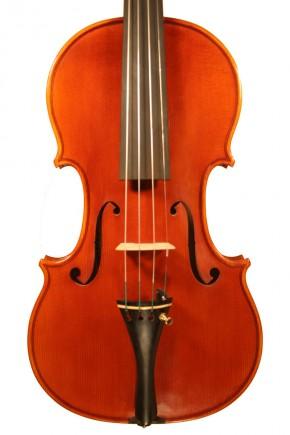 Violin - image